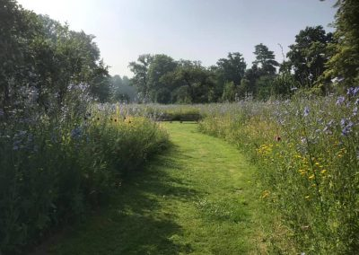 Vlindertuin Vaeshartelt